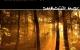 Matthias Springer – Chronometry EP [DIMBI005]