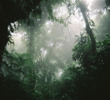 [Free Tune] Kogyo – Ecliptic