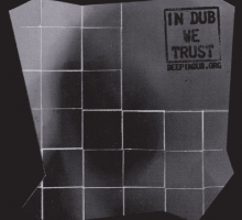 Various – In Dub We Trust (Deepindub 070)