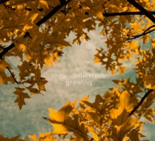 "[Preview] Purl & Deflektion – Autumn Legend (From forthcoming ""Growing LP"" on Dewtone Recordings)"