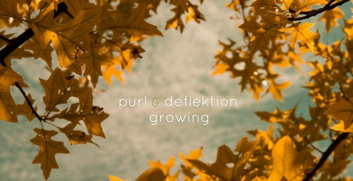 [Release] Purl & Deflektion – Growing LP (Dewtone Recordings 018)