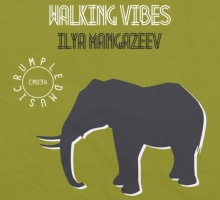 [Deep House Release] Ilya Mangazeev – Walking Vibes EP