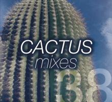 Miruga – Cactus Mix 038