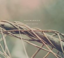 Snufmumriko – Driftwood