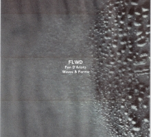 Fen D'Arioto – Waves & Forms (FLWD03)