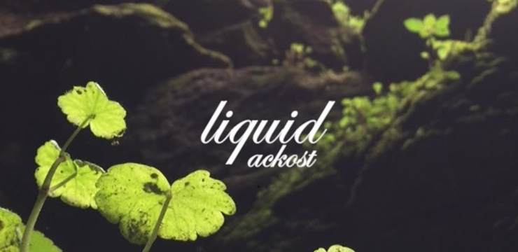 Ackost – Liquid LP