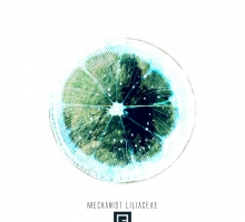 Mechanist – Liliaceae EP