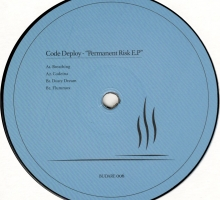 Code Deploy – Permanent Risk EP (BUDARE006)